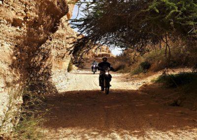 MotorcykelIsrael